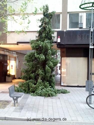 Weihnachtsbaum Neuss